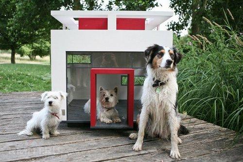 Будки и домики для собак