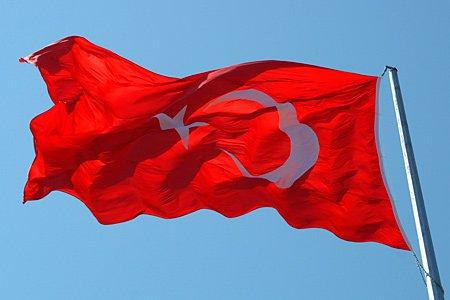 Филиалам крупных турецких компаний в РФ разрешили нанимать граждан Турции