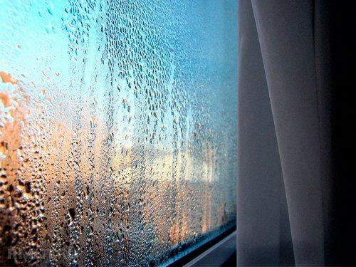 Плачут ипотеют окна: поиск причин иих устранение