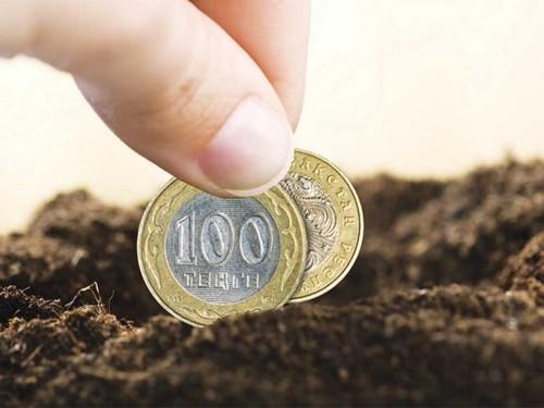 Налог на имущество, земельный участок