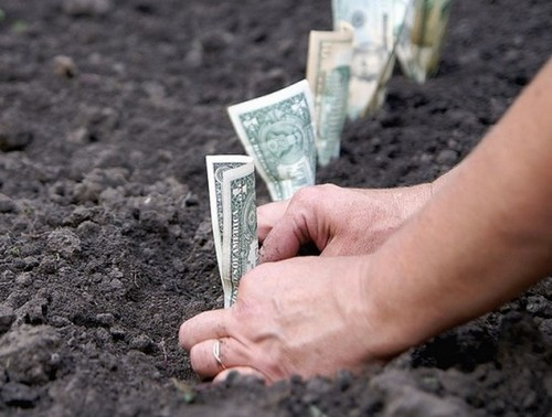 Как заплатить земельный налог?