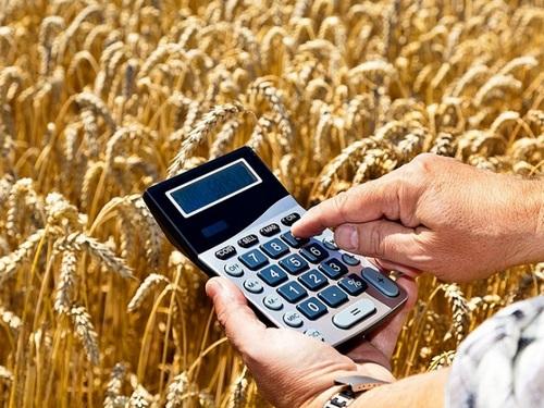 Порядок уплаты земельного налога