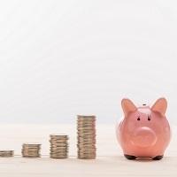 Неналоговые платежи станут налогами, сборами и госпошлинами