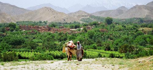 Работа в Афганистане