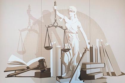 Кто несет ответственность, за нарушения Советов народных депутатов