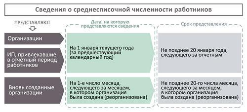 В какие сроки нужно представить сведения по форме КНД 1110018