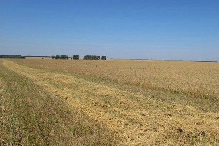 Первый иск об изъятии земли у собственника зарегистрирован в Подмосковье
