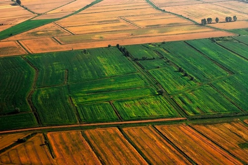 Использование видов земель