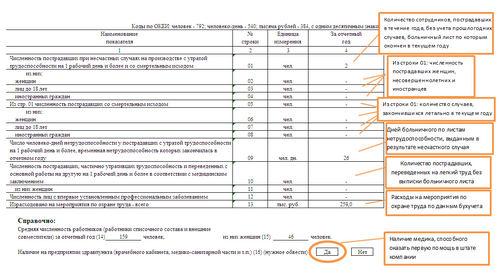 Обновленные бланк и порядок заполнения отчета: что изменилось